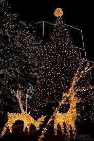 christmas in rva christmas lights lights and virginia