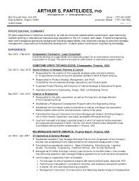 resume format in word file for experienced crossword responsible synonym resume skywaitress co