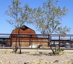 Boot Barn Las Cruces New Mexico Las Cruces Tour U2013 Odds U0026 Ends Wide Bay U2013 High Desert