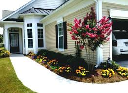landscaping ideas front yard no grass garden cheap for creative
