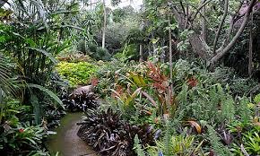 World Botanical Gardens Rainbow2 Png