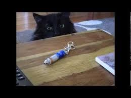 best 25 cat laser toy ideas on pinterest wooden castle wooden