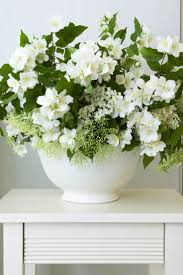 305 best classic white and green flowers images on pinterest