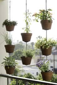 indoors garden organic gardening grow light kits indoor plants indoor hydroponic