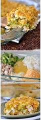Dinner Casserole Ideas Best 25 Large Family Meals Ideas On Pinterest Meals For Large