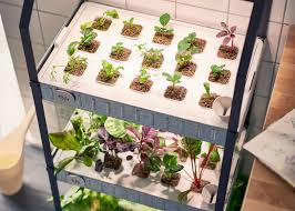 Indoor Vegetable Garden Kit by Ikea Moves Into Indoor Gardening With Hydroponic Kit