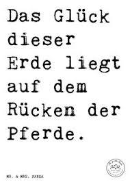 sprüche reiten spruch don t worry don t cry ride a and fly sprüche