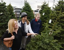 missoula parks and rec begins christmas tree recycling program