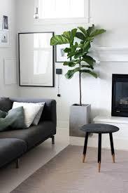 living room plant home design ideas