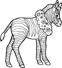 popular zebra coloring pages kids design galle 1431 unknown
