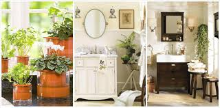 bathroom themes for adults sacramentohomesinfo