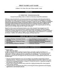 it manager resume exles it director or senior manager resume template premium resume