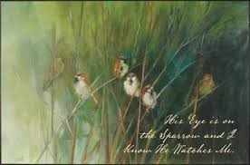 his eye is on the sparrow abiding in the vine