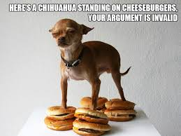Dog Funny Meme - let s give a standing ovation to these awkwardly standing dogs