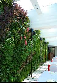 202 best garden wall images on pinterest vertical gardens