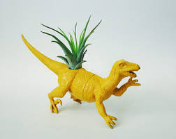 Small Desk Plants by Customize Your Own Small Dinosaur Planter With Air Plant Home
