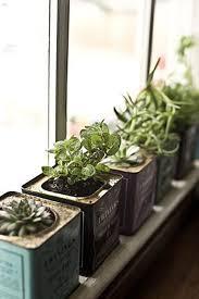 Window Sill Herb Garden Designs 15 Fabulous Indoor Garden Ideas