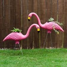 best 25 plastic flamingos ideas on yard flamingos