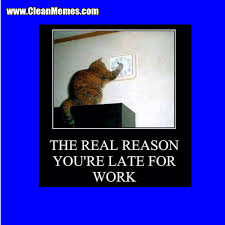 Funny Memes For Work - late for work clean memes