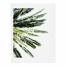 buy palm tree from bed bath beyond