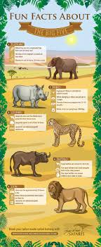 facts about the big five in africa visual ly