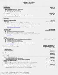 Basic Resume Skills Examples by Resume Resume Soft Skills Example Curriculum Vitae Sample Word