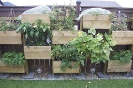 fall how to do a vertical garden trending vertical gardens ideas