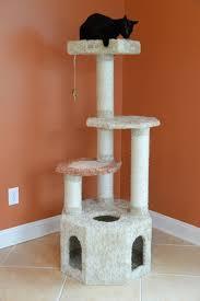 armarkat com cat furniture cat tree dog bed cat bed