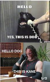 This Is Dog Meme - wrestling memes on twitter the first ever this is dog wrestling