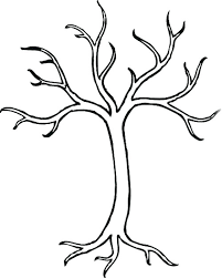 5 branches to represent the 5th imam baqir a s tree represents