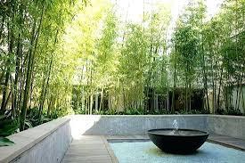 Bamboo Garden Design Ideas Bamboo Landscape Design Bamboo Garden Design Ideas How To Create A