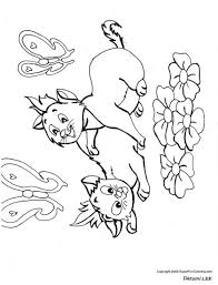 puppy kitten coloring page free download
