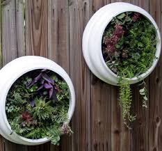 37 best vertical gardening images on pinterest vertical gardens