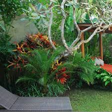 small tropical garden ideas small flower gardens that will