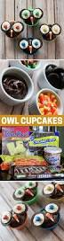 how to make owl cupcakes for fall and halloween mom spark mom
