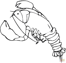 cold water lobster coloring page free printable coloring pages