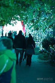 Botanical Gardens Atlanta Christmas Lights by Atlanta Proposal Ann Parks Photography U2022 Atlanta Online Dating