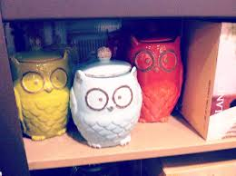 owl canisters for the kitchen owl kitchen decor photos ideas