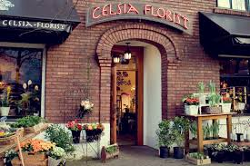 florist shops five places you can buy a plant near you clivia decoster