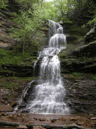 West Virginia waterfalls images Cathedral falls jpg