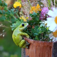 Frog Flower Vase Amazon Com Top Collection Miniature Fairy Garden And Terrarium