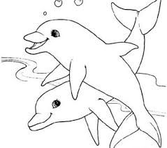printable dolphin images dolphin coloring pages printable coloring page freescoregov com