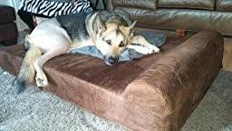 Barker Dog Bed Big Barker 7 Inch Pillow Top Orthopedic Extra Large Review