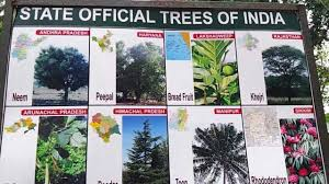 list of indian state trees video in hd state official trees of