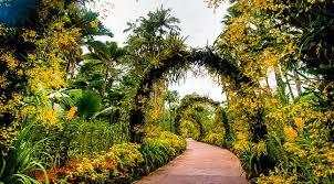 Singapore Botanic Gardens Location Singapore Botanic Garden Places In Singapore World Top Top