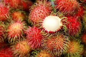 lychee fruit inside all about the tropical fruit rambutan