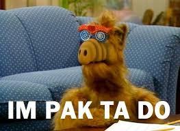 Alf Meme - hazunmeme on twitter memes alf im pak ta do http t co ha0qwnonon