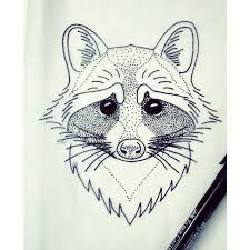 best 25 raccoon tattoo ideas on pinterest raccoon art raccoon