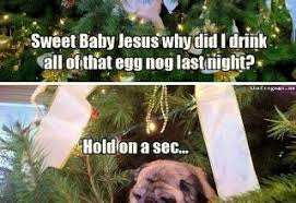 Christmas Dog Meme - pug in christmas tree archives what breed is it