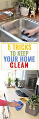 Cleaning Tips For Home by 620 Best Cleaning Tips For Home Images On Pinterest Cleaning